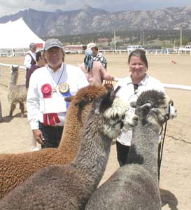 Robin and Gary Neher at an alpaca show